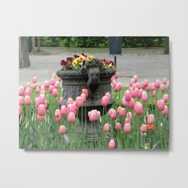 Schonbrunn Gardens Metal Print
