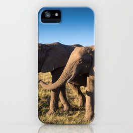 Two happy elephants walking together in African Savannah at sunset iPhone Case