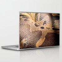 anaconda Laptop & iPad Skins featuring Anaconda by theGalary