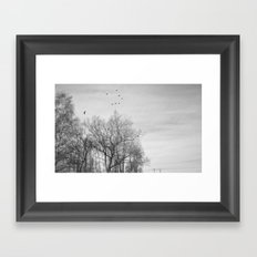 Crows Framed Art Print