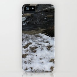 beautiful Goose showing off. iPhone Case