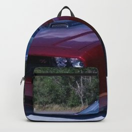 100th Anniversary Challenger with rare shaker hood Backpack