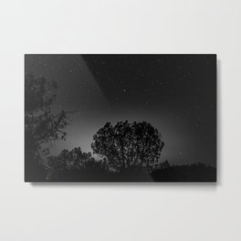 Tree Bomb Metal Print