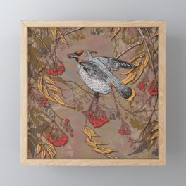 Waxwing Winter Feast Framed Mini Art Print