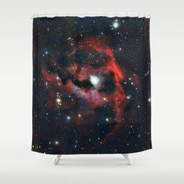 Seagull Nebula Shower Curtain