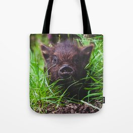 Piglet: Portrait of a Kunekune Tote Bag