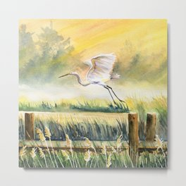 Egret Flying Over Marsh  Metal Print