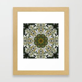 Lacy Serviceberry mandala 0033 k11 Framed Art Print