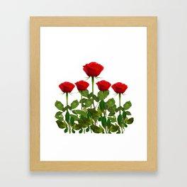 ORIGINAL GARDEN DESIGN OF RED ROSES ON WHITE Framed Art Print