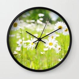 Daisy Meadow Wall Clock