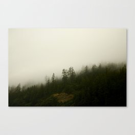 Timber Canvas Print