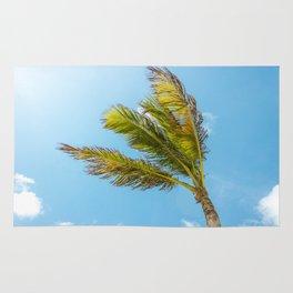 Palm Tree, Blue Sky Rug
