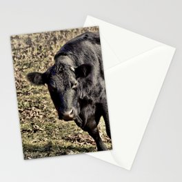 Black Cow Mesmerized Stationery Cards
