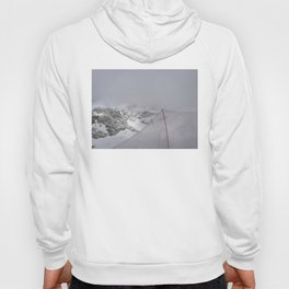 Snow is whiter on the other side Hoody