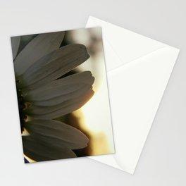 daisy. Stationery Cards