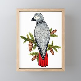 African Grey on a Fir Branch in Watercolor Framed Mini Art Print