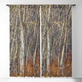 Denver Woodland Blackout Curtain