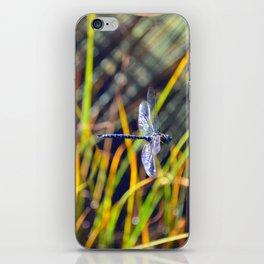 Damselfly iPhone Skin