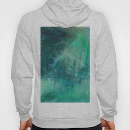 Abstract No. 339 Hoody