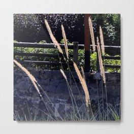 Alpine Border Grasses Metal Print
