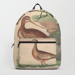 Great Marbled Godwit Hudsonian Godwit White Godwit9 Backpack