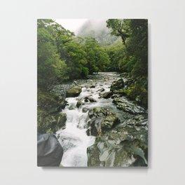New Zealand Rainforest Metal Print