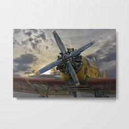 litle yelow bird Metal Print