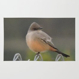 Say's Phoebe at Dusk Rug