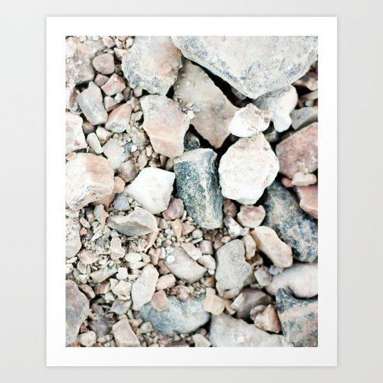 Stone Cold Fox Art Print