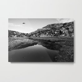Ufo III Metal Print