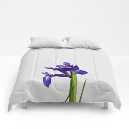 Iris Still Life, Flower Photography Comforters