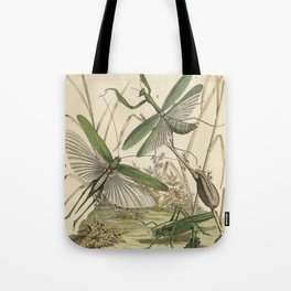 Grasshopper & Mantis Tote Bag