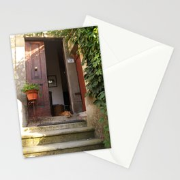 Cat in doorway in Pisa, Italy - Maincoon - Holiday cats - Travel photography Stationery Cards