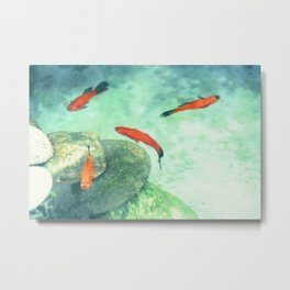 Fish watercolor III Metal Print