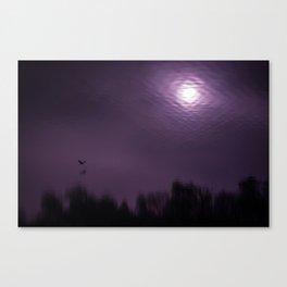 Mirror world Canvas Print