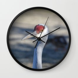 Sandhill Crane Wall Clock