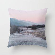 Frozen morning Throw Pillow
