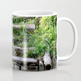 River stairs Coffee Mug