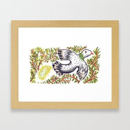Lola the Pigeon Framed Art Print