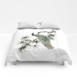 Turquoise Peacock Comforters
