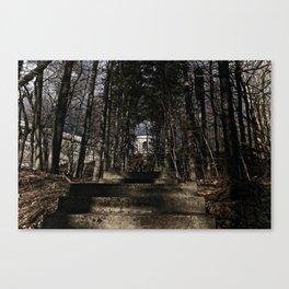 Nature Steps Canvas Print