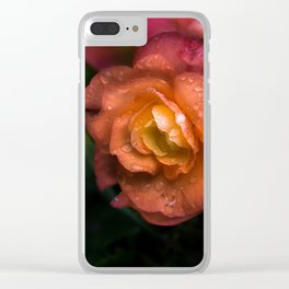 Begonia Droplets Clear iPhone Case