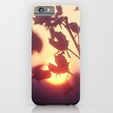 Garden Sunset iPhone 6s Slim Case