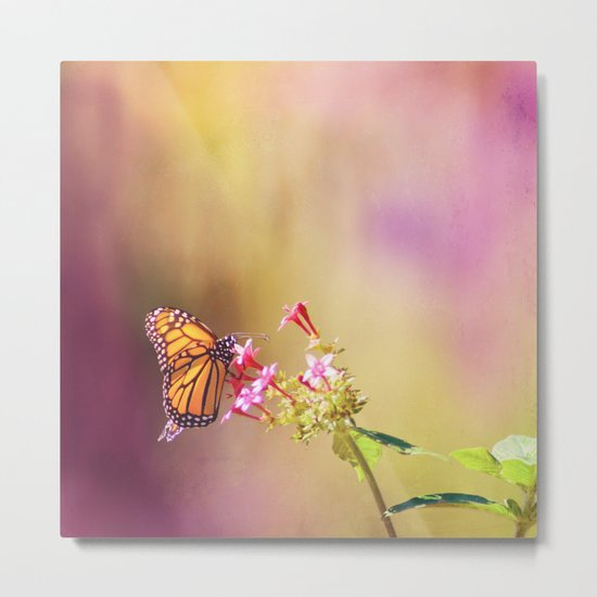 Monarch Rainbows Metal Print