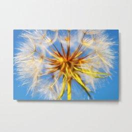 Giant Dandelion Metal Print