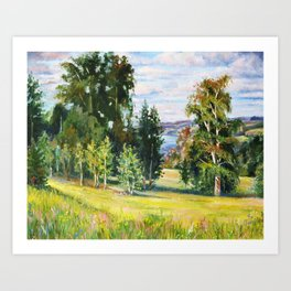 Birch Grove # 2 Art Print