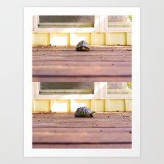 Mugshot Turtle Art Print