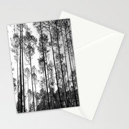 Lined Up Stationery Cards
