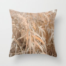 All natural | Dry grasses in Bologna Italy Throw Pillow
