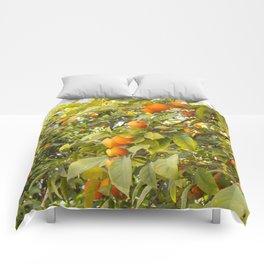 Fruits of Greece Comforters